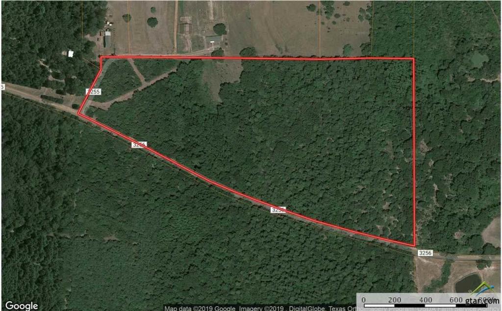 0000 Cr 3256, Quitman, Tx 75783 (Mls #10106712) :: Re/max - Quitman Texas Map