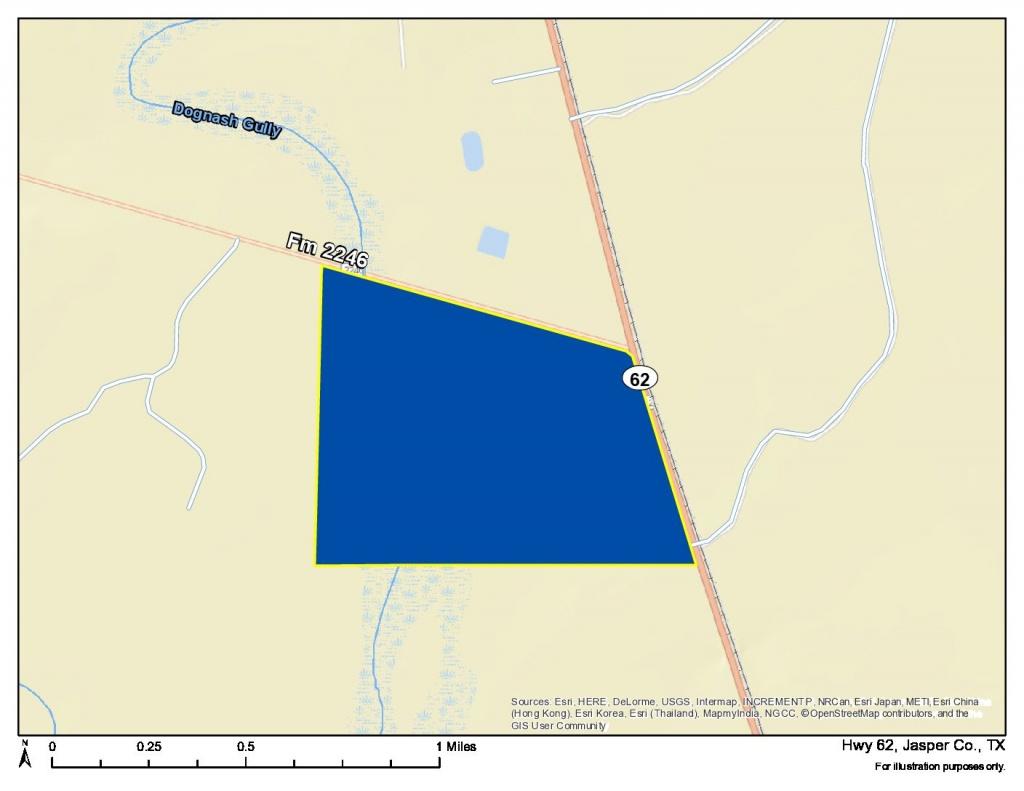388 Acres   Jasper County   Homeland Properties - Jasper County Texas Parcel Map