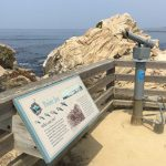 A Tour Of The 17 Stops On 17 Mile Drive   17 Mile Drive California Map