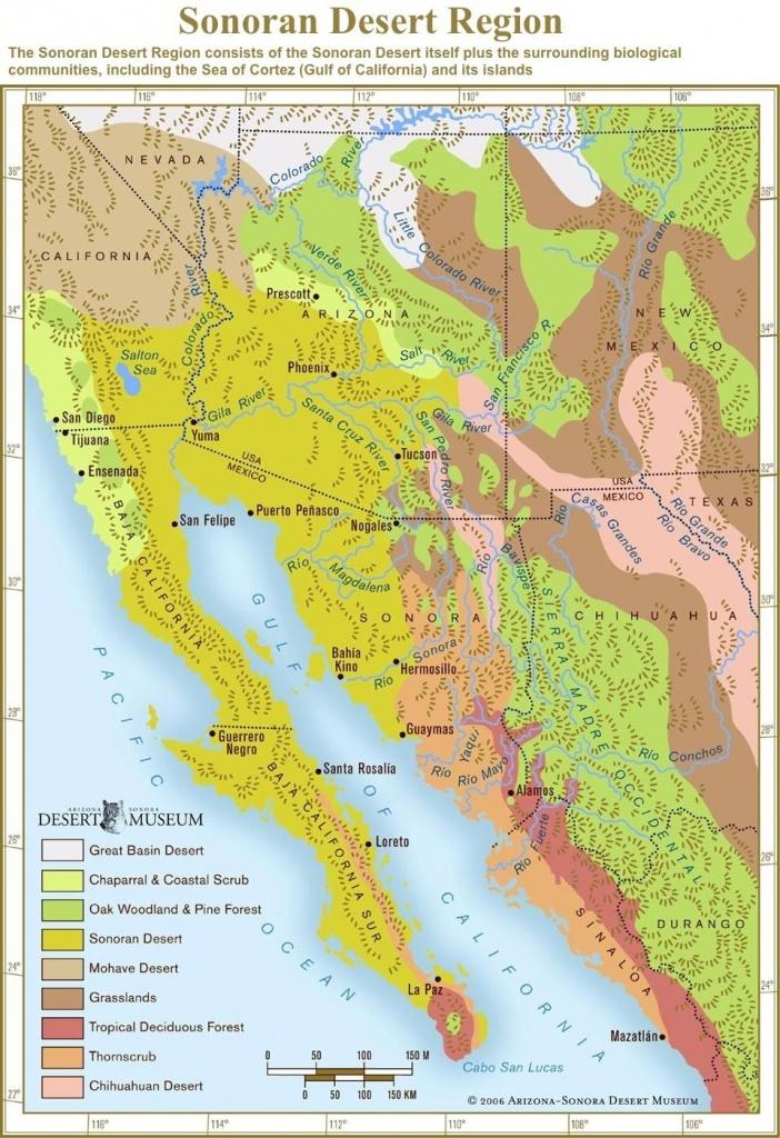 Arizona-Sonora Desert Museum's Conservation Education & Science - California Desert Map