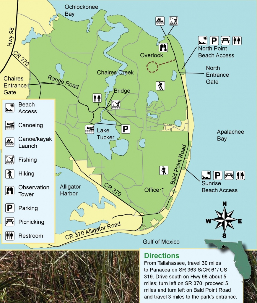 Bald Point State Park On Alligator Point - Beaches - Things To Do - Alligator Point Florida Map