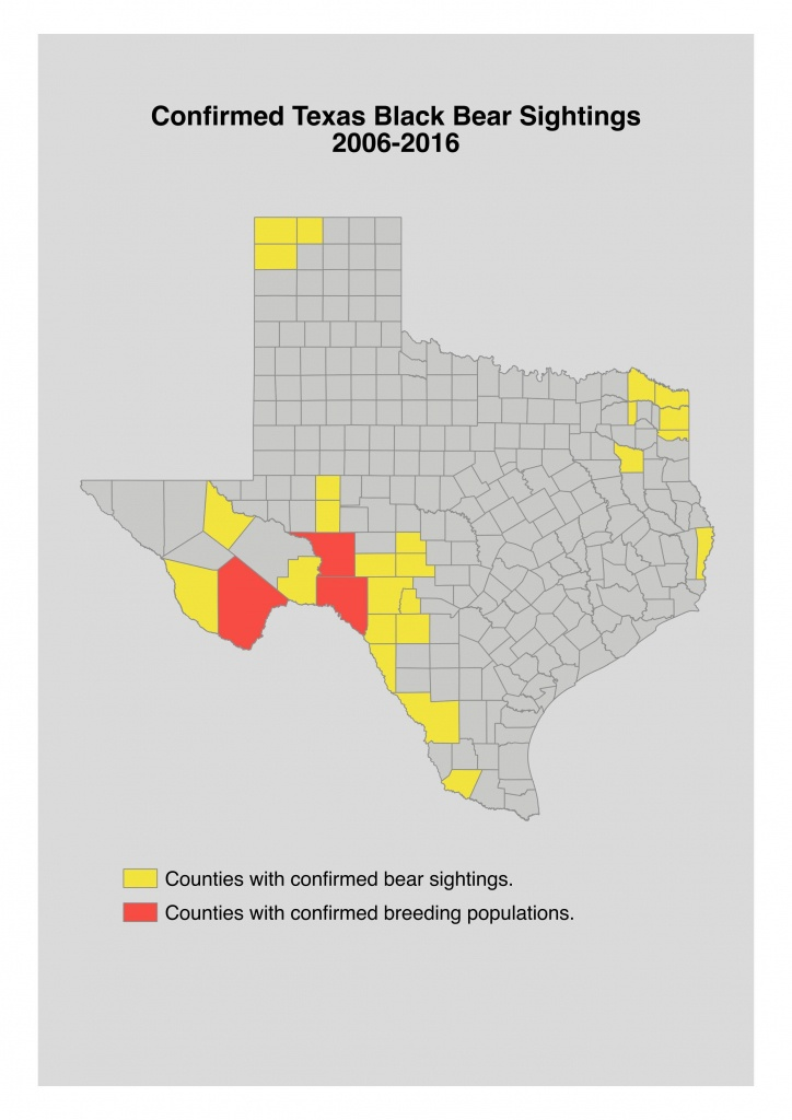 Bear Safety For Hunters In Texas - Van Horn Texas Map