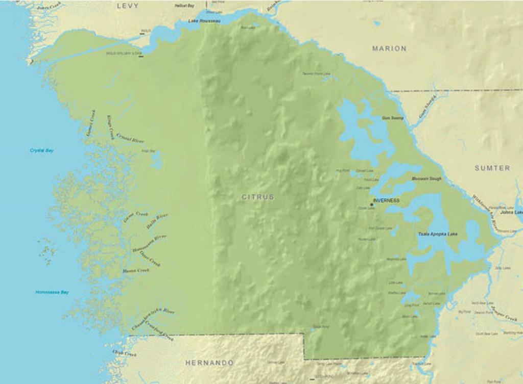 Citrus Hills Rocks - David Collins | Era Citrus County - Citrus Hills Florida Map