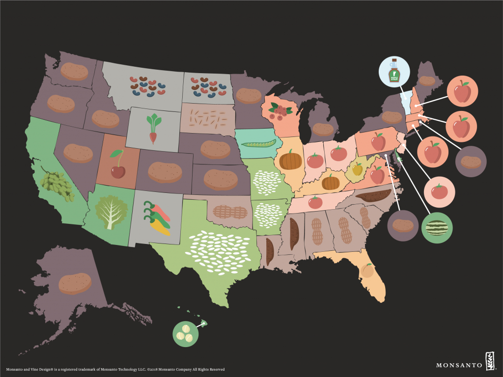 Crop Map: Who Grows What In The U.s. | Monsanto - Texas Wheat Production Map
