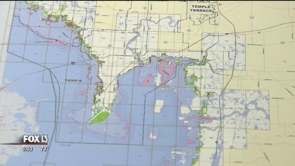 Fema Proposes New Flood Maps For Hillsborough, Pinellas Counties - Flood Zone Map Hillsborough County Florida