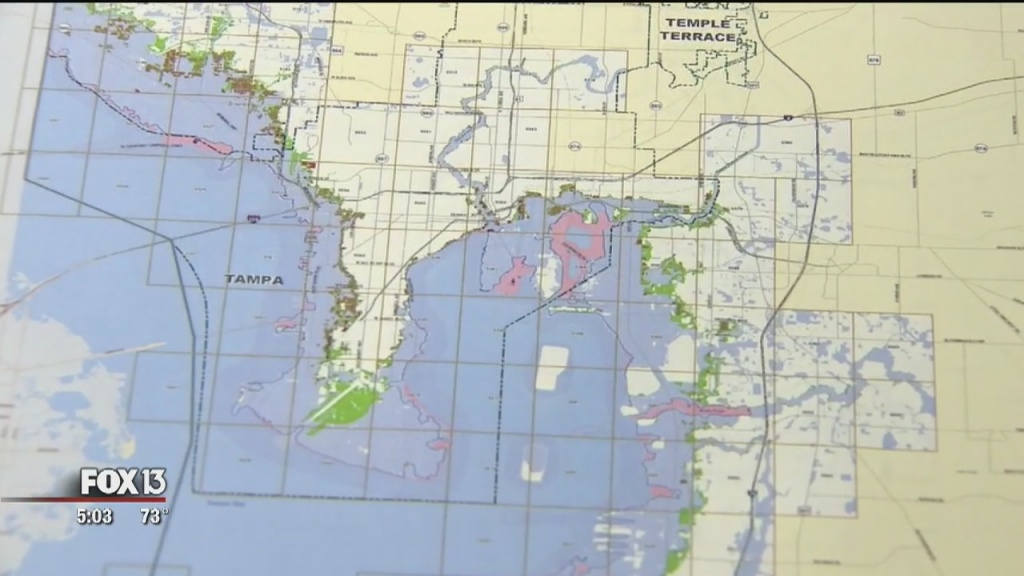 Fema Proposes New Flood Maps For Hillsborough, Pinellas Counties - Flood Zone Map South Florida