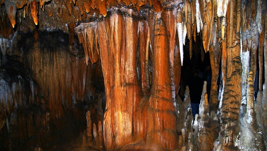 Florida Caverns State Park Topo Map, Jackson County Fl (Marianna Area) - Florida Caverns State Park Map