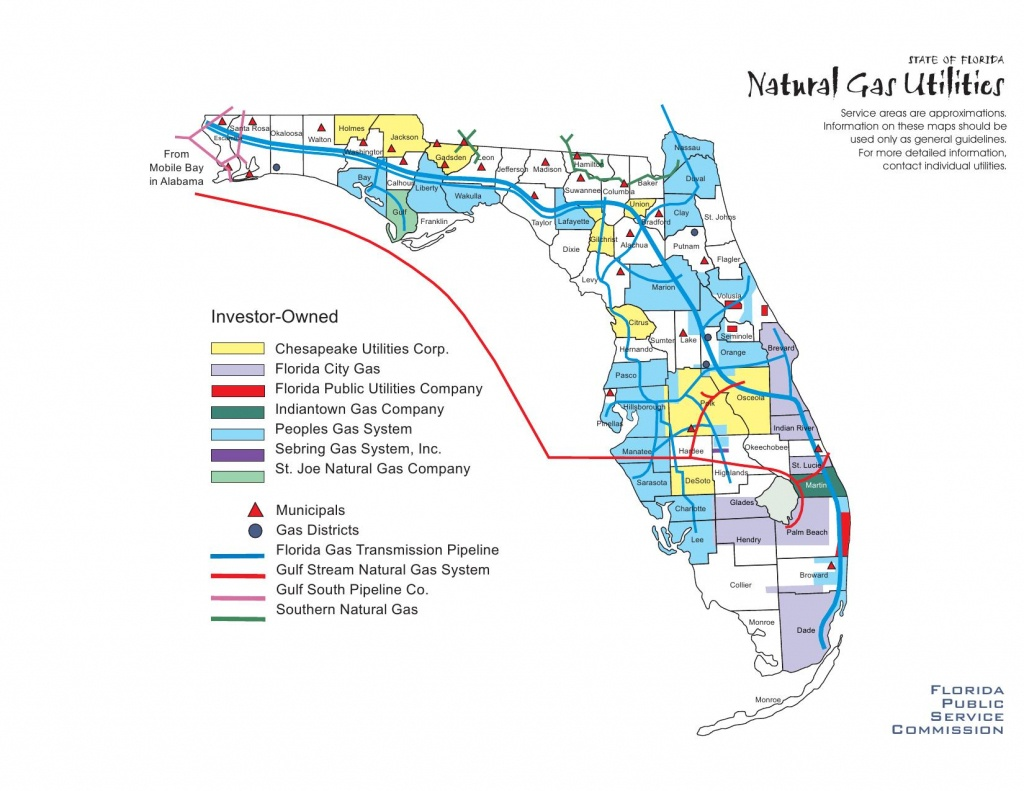 Florida Natural Gas Utilities · Avalon Energy - Florida City Gas Service Area Map