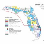 Florida Natural Gas Utilities · Avalon Energy   Florida Natural Gas Map