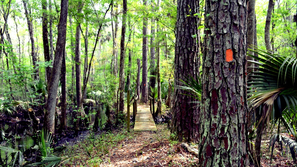 Florida Trail Hiking Guide - Guthook Guides - Florida Trail Maps Download