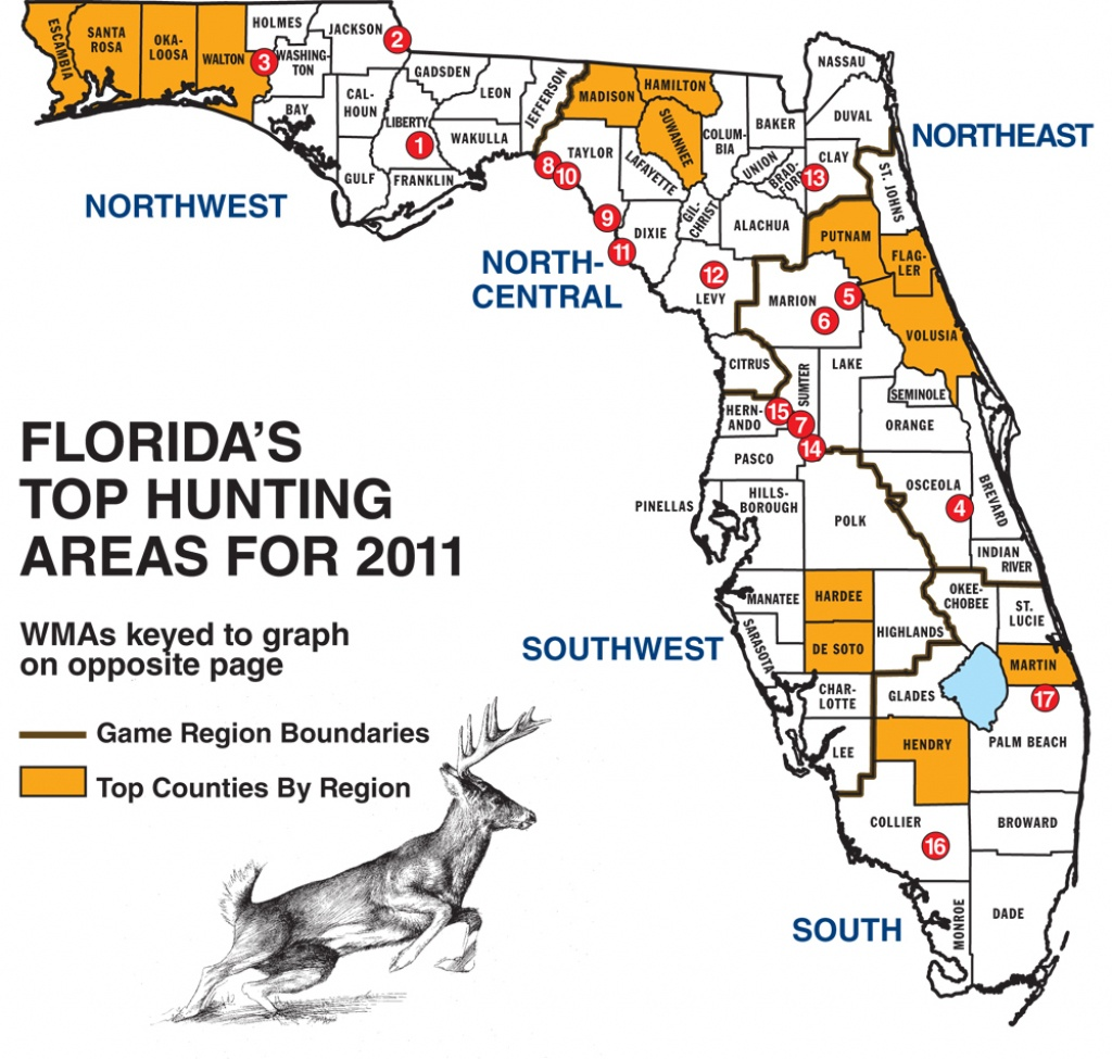 Florida Whitetail Experience - Page 2 - Huntingnet Forums - Florida Public Hunting Land Maps