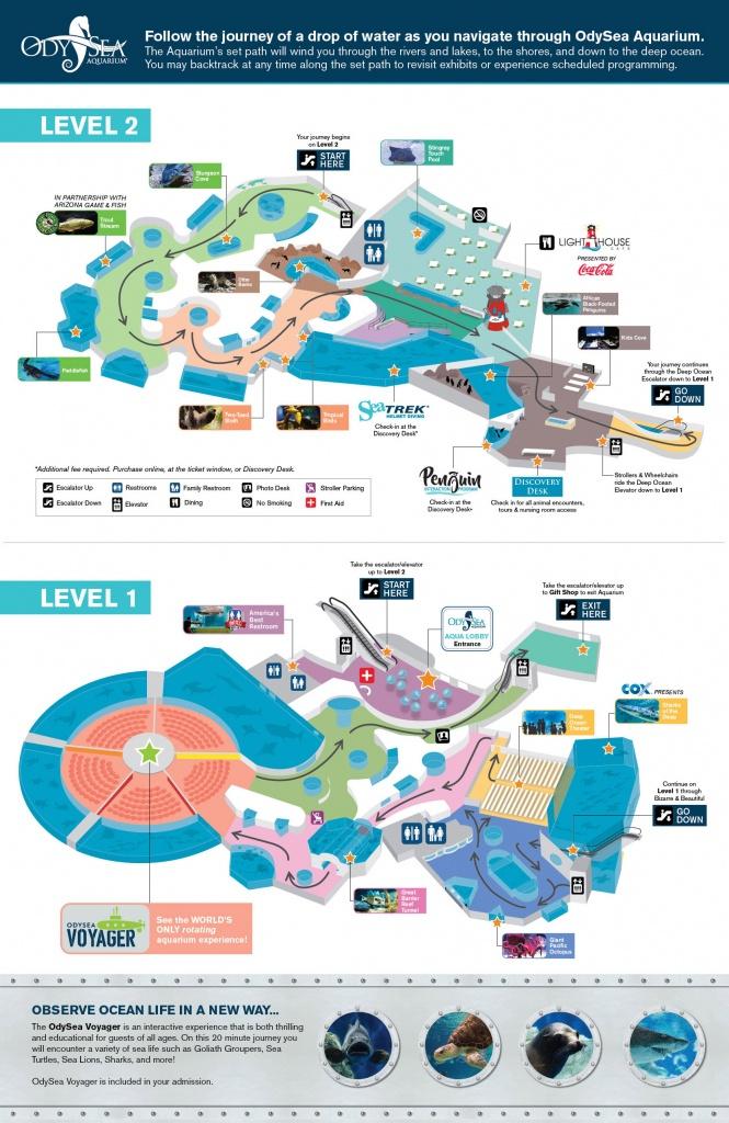 Hours And Visit Info For Odysea Aquarium - Texas State Aquarium Map
