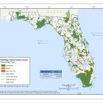 Land Conservation – The Florida Conservation Group   Florida Wetlands Map
