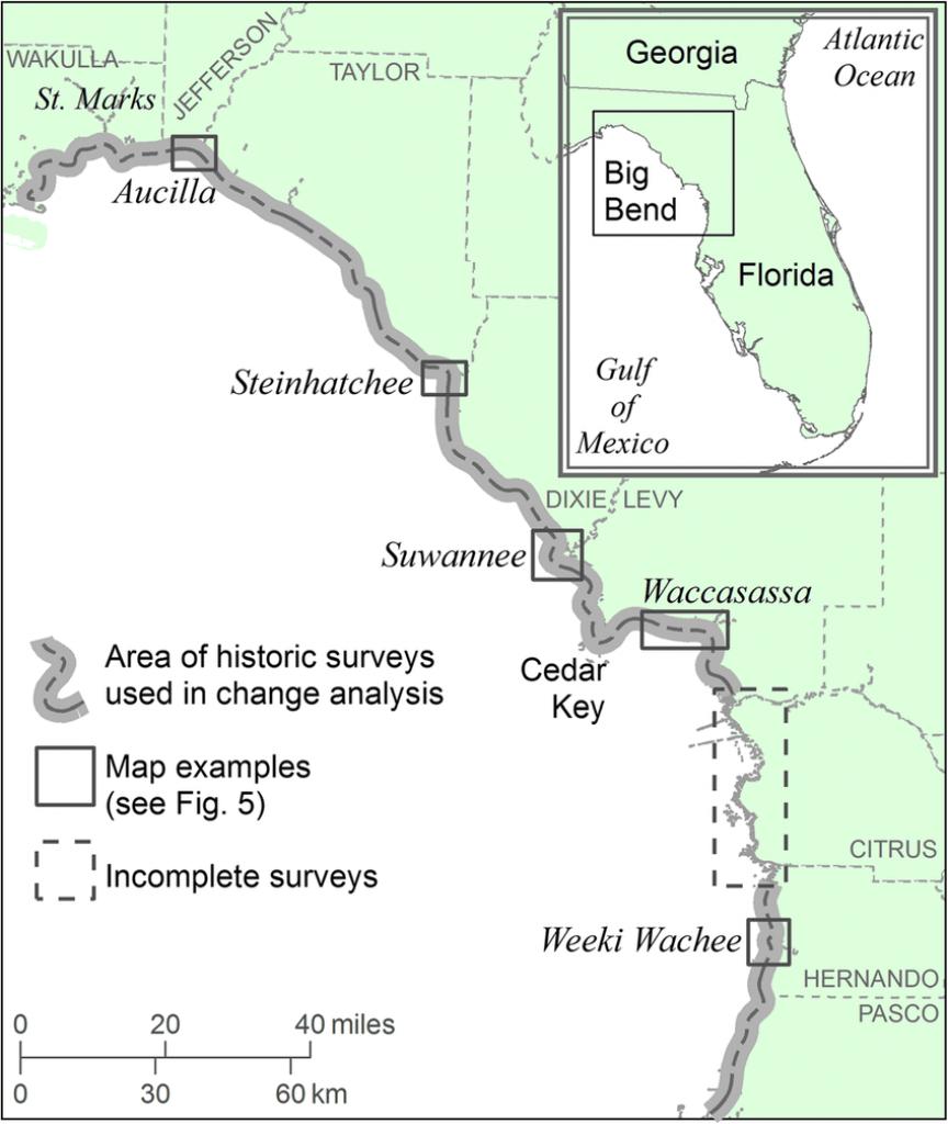 Location Map Of Florida Big Bend Marsh Coast On The Gulf Of Mexico - Florida Gulf Coastline Map