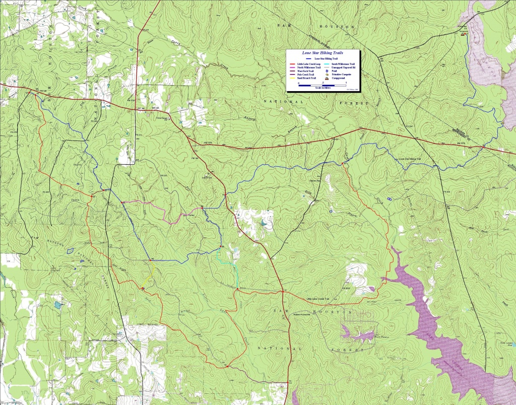 Lone Star Hiking Trail-West, Near Houston Tx. Free Detailed Topo Maps. - Texas Hiking Trails Map