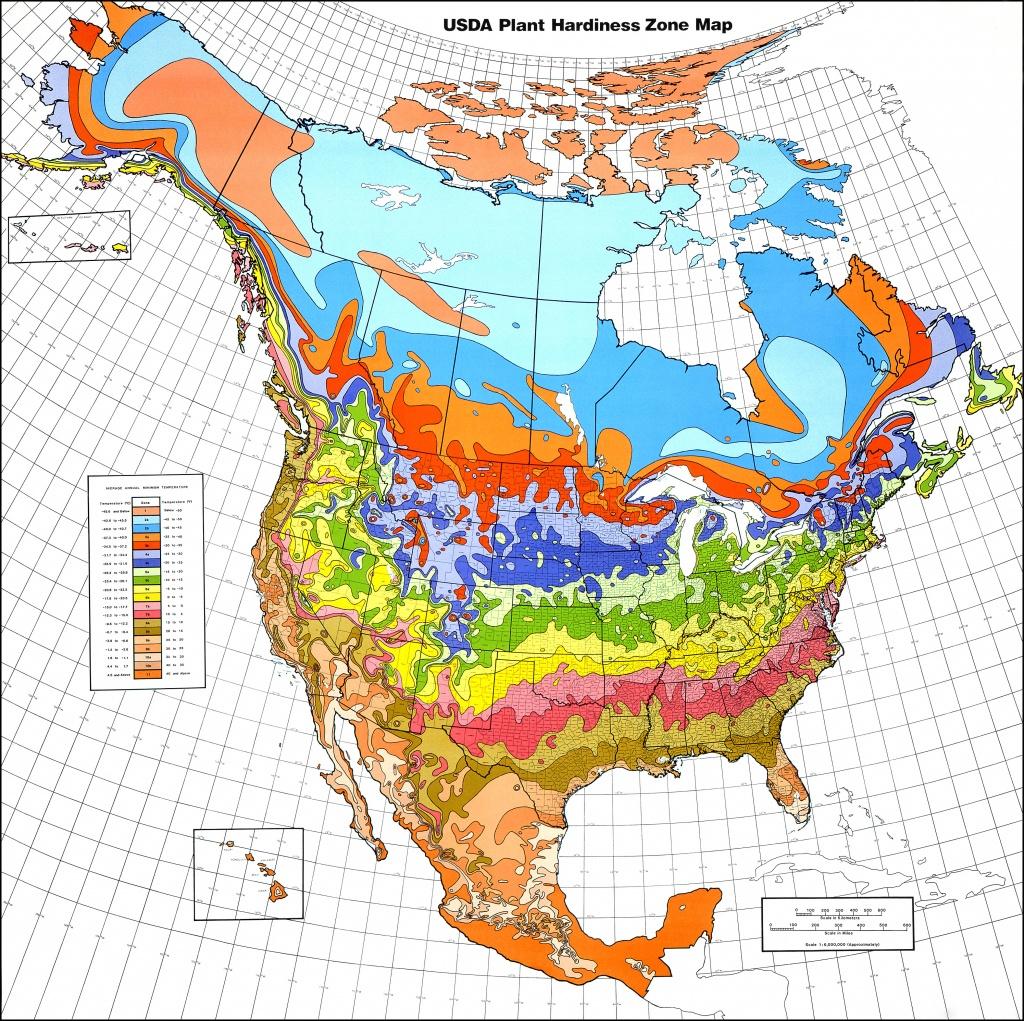 Map Downloads | Usda Plant Hardiness Zone Map - Usda Zone Map Florida
