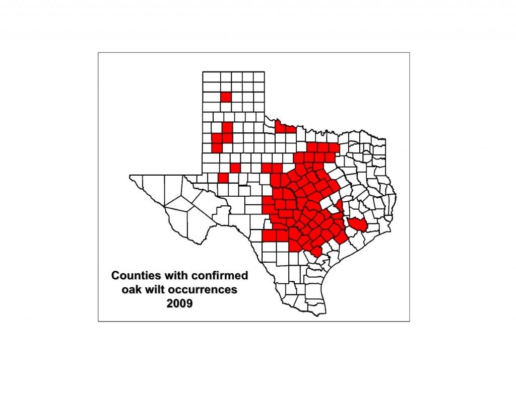 Map Gallery - Oak Wilt Texas Map