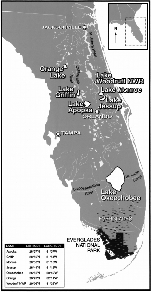 Map Of Florida Showing The Everglades And The Study Lakes | Download - Map Of Florida Showing The Everglades