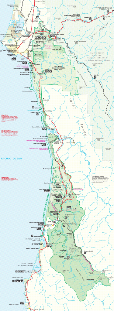 Map Of Northern California Redwood Forest – Map Of Usa District - California Redwood Parks Map