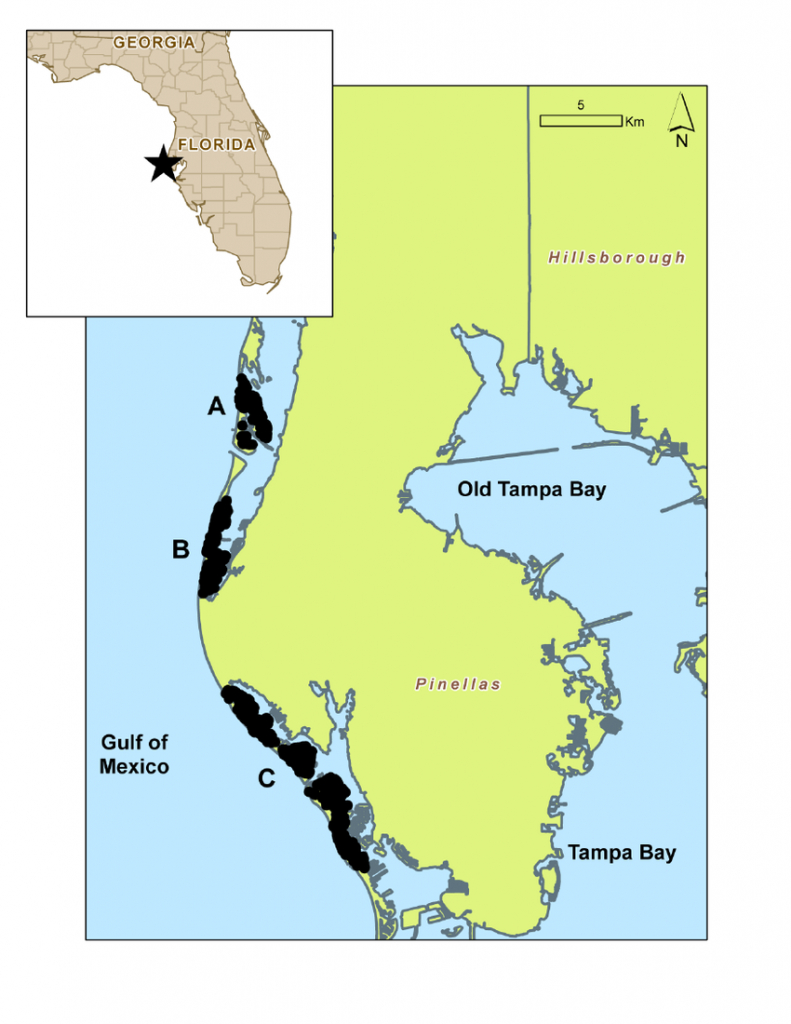 Map Of Study Area (Pinellas County Barrier Islands) | Download - Map Of Pinellas County Florida