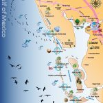 Map Out Your Next Vacation In The Florida Gulf! | Gulf Island Tours   Punta Gorda Florida Map