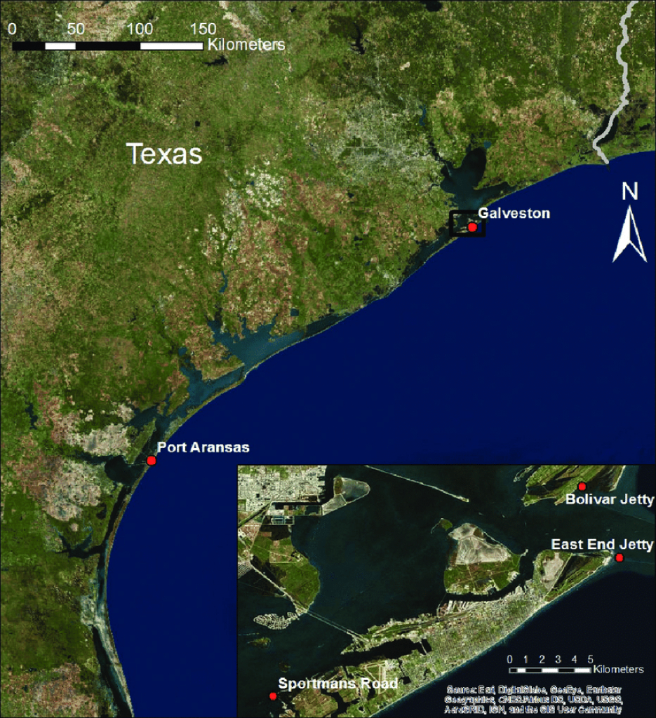 Map Showing The Texas Coast With Port Aransas And Galveston Marked - Google Maps Port Aransas Texas