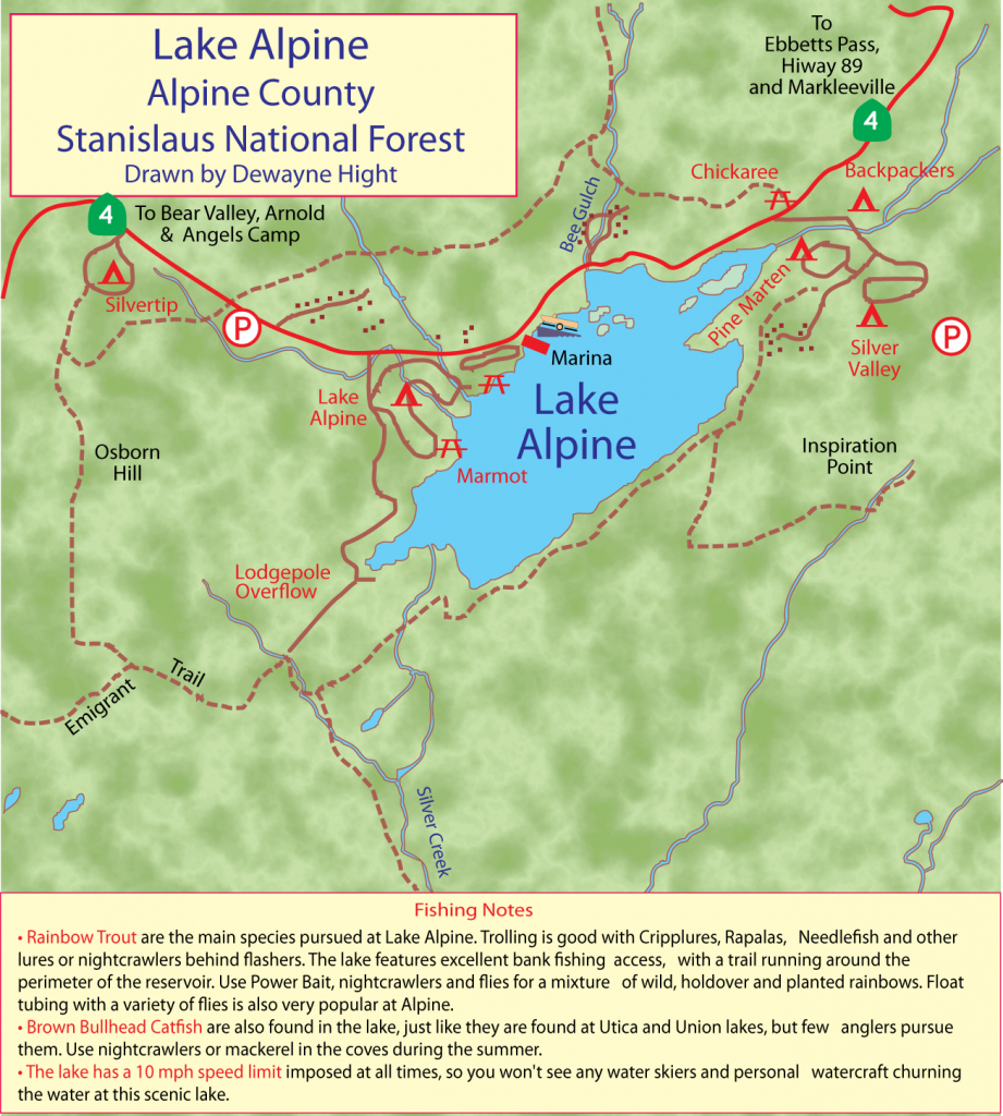 Maps - Bass Lake California Map