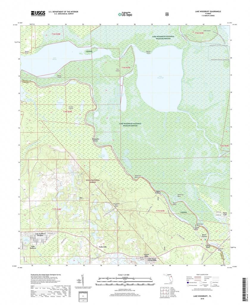 Mytopo Lake Woodruff, Florida Usgs Quad Topo Map - Orange Lake Florida Map
