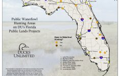 Public Waterfowl Hunting Areas On Du Public Lands Projects   Florida Public Hunting Land Maps