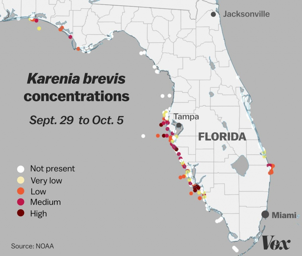 Red Tide: Why Florida's Toxic Algae Bloom Is Killing Fish, Manatees - Toxic Algae In Florida Map