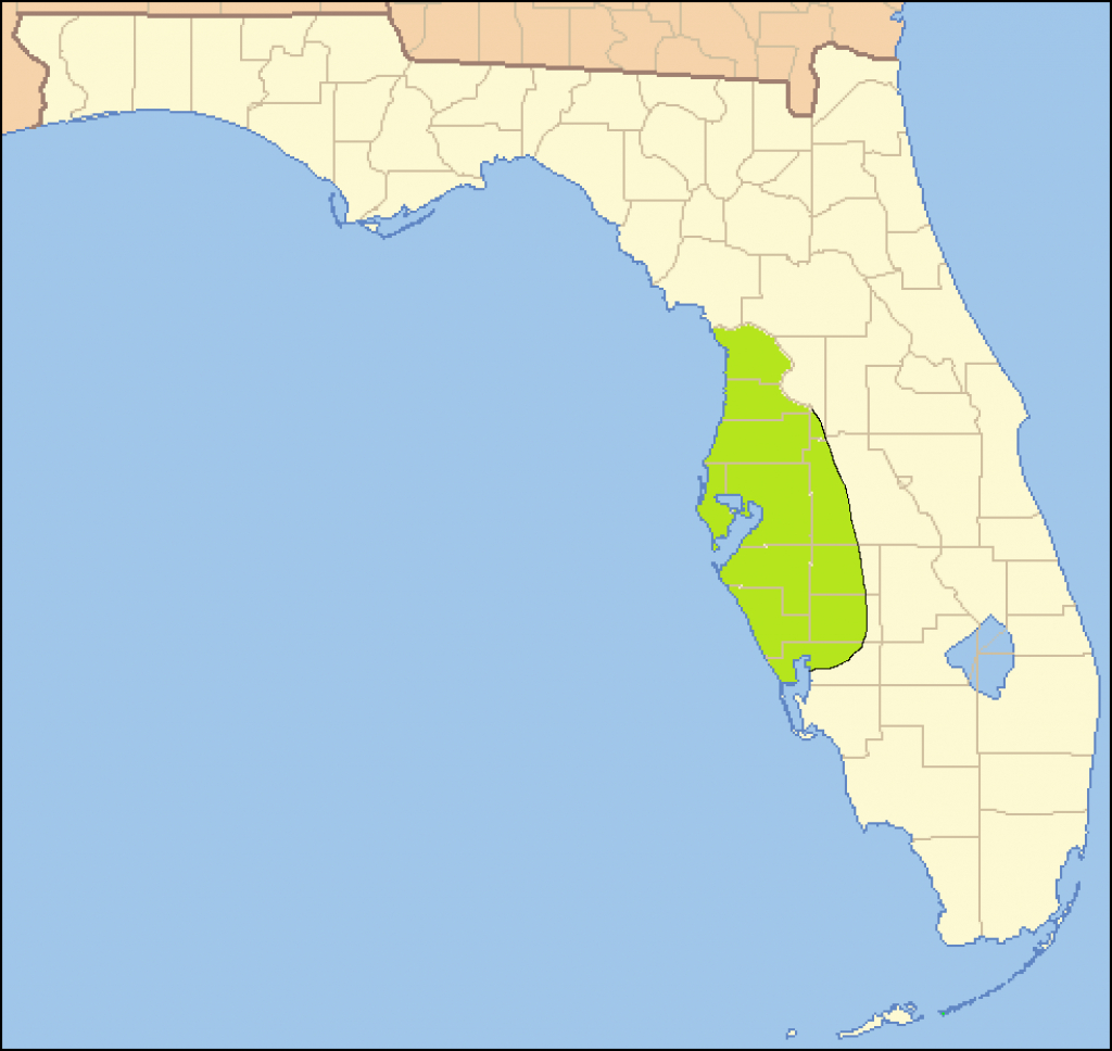 Safety Harbor Culture - Wikipedia - Safety Harbor Florida Map