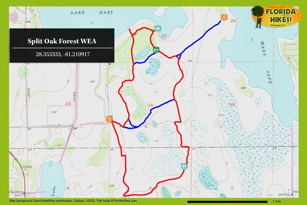 Split Oak Forest Wea   Florida Hikes! - Central Florida Bike Trails Map