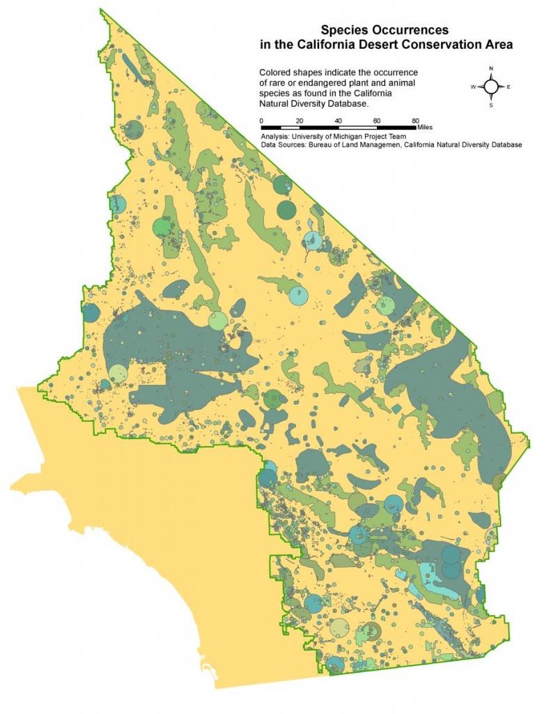 Technology & Environment - Ecology Of The Ca Desert - Rare And - California Desert Map