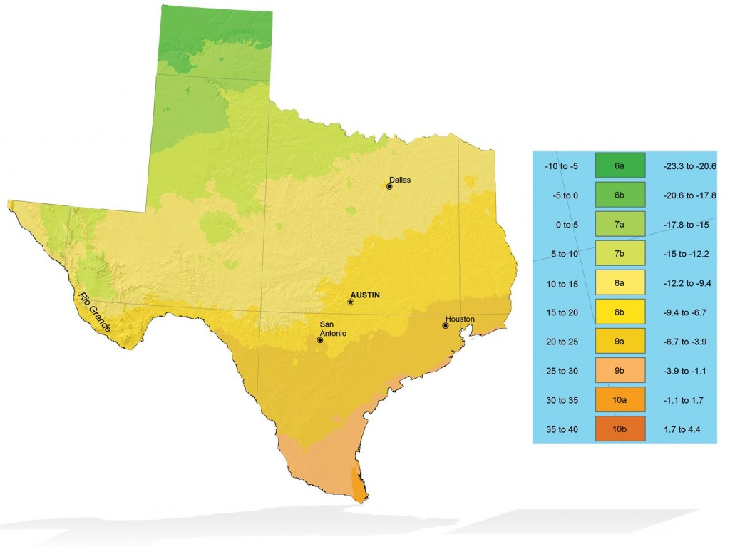 Texas Zone Elevation Map | Info Graphics | Texas Plants, Cool Plants - Texas Elevation Map