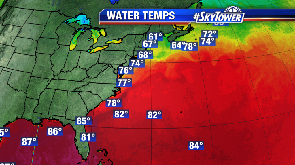 The Difference In Growing Palms In California And Florida - Weather - Florida Water Temperature Map