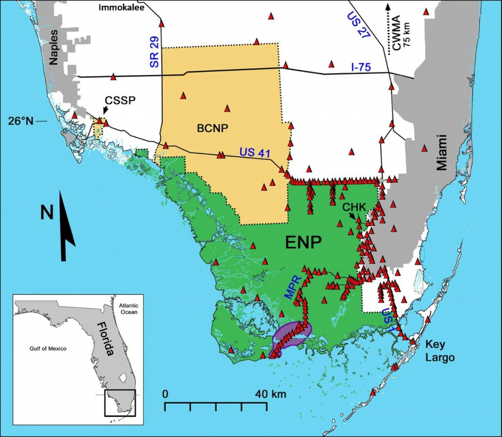 This 14-Foot Python Was Caught With 3 Deer In Its Gut. That's A Bad - Florida Snake Problem Map