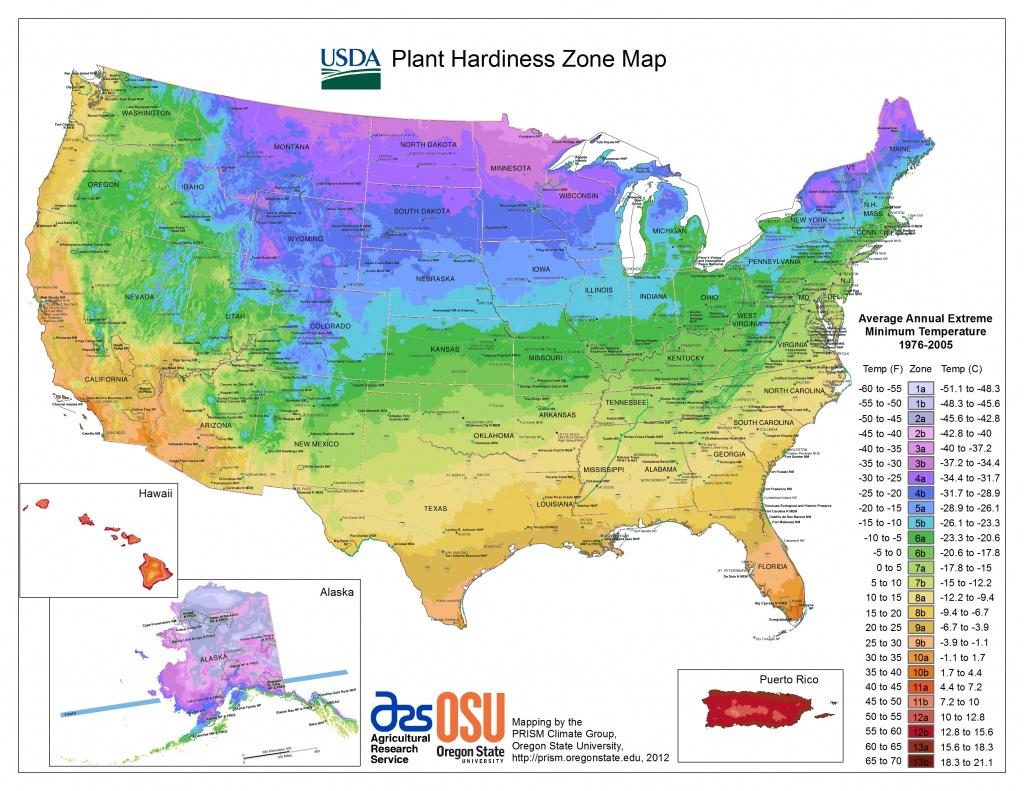 Usda Hardiness Zone Finder - Garden - Florida Zone Map