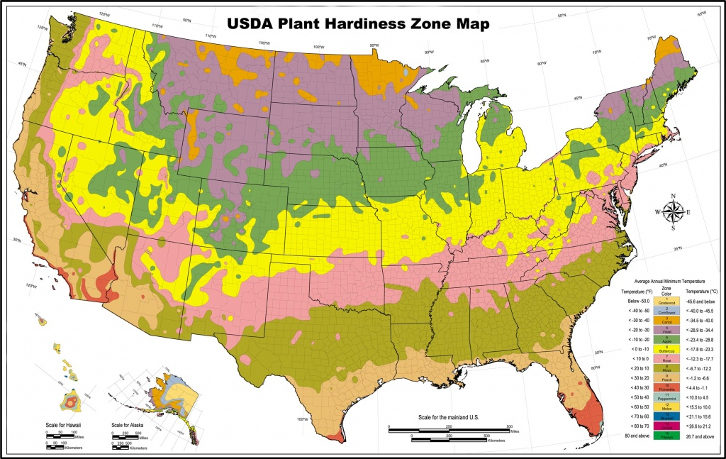 Usda Zone Map For Los Angeles Gardeners - Lawnstarter - Growing Zone Map California